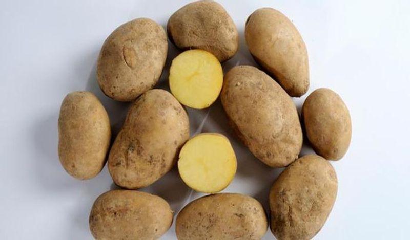 <p> बटाटा रेफ्रिजरेटरमध्ये ठेवल्यास त्यातील स्टार्च साखरमध्ये बदलते आणि बटाटा चाचणी नष्ट होते. बटाटे सूर्यापासून थंड ठिकाणी ठेवा. हे प्लास्टिकमध्ये ठेवू नका. </ P>